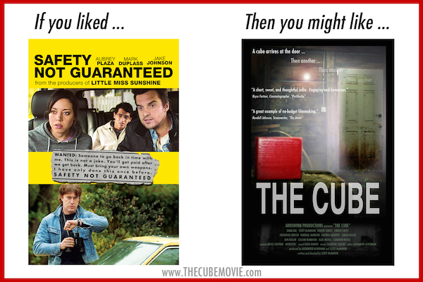 If You Liked Safety Not Guaranteed 600px