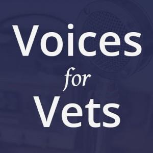 V4V Logo