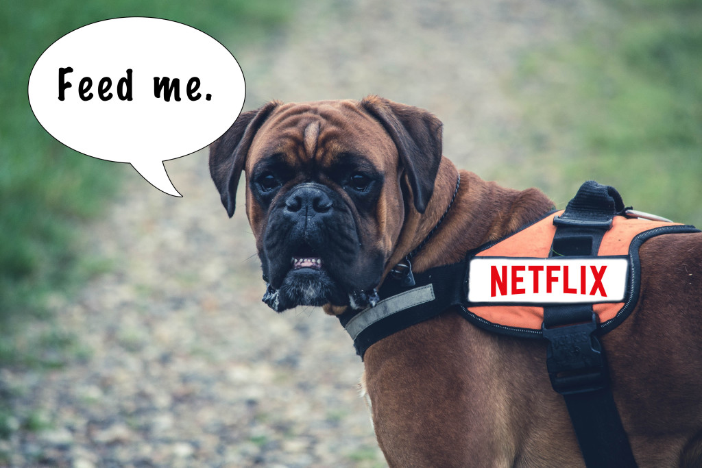 Film Trooper Blog - Does Netlfix's Ban on VPN Matter?